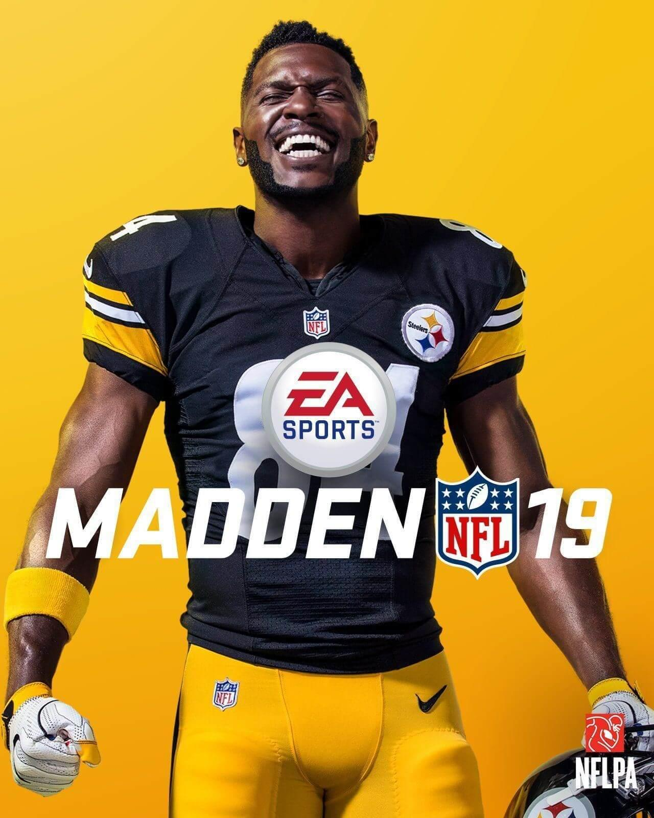 Picture of Madden NFL 19