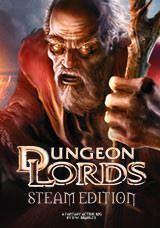 Picture of Dungeon Lords Steam Edition