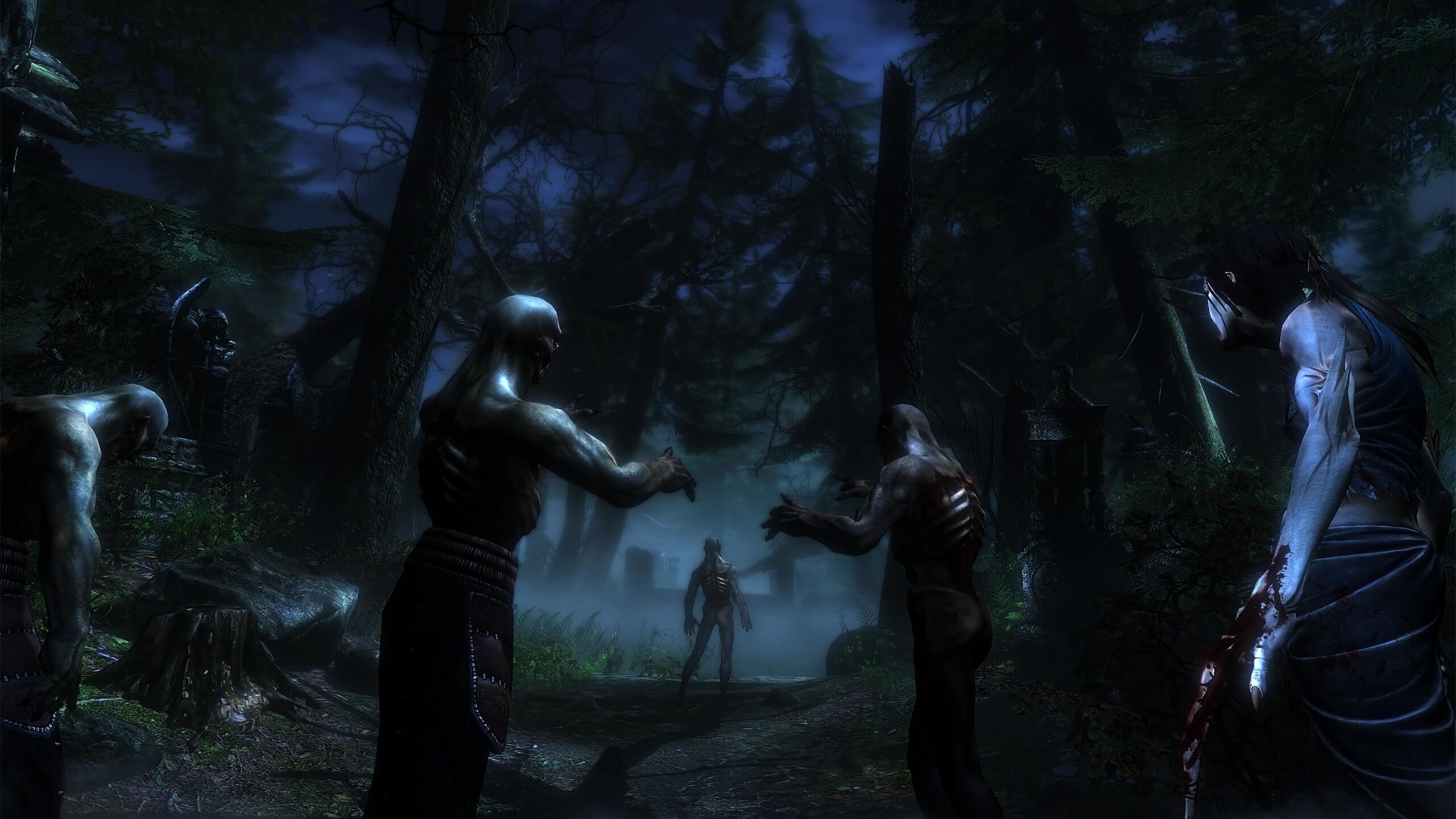 Two Worlds II HD - Call of the Tenebrae (WW)