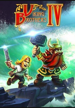 Picture of Viking Brothers 4